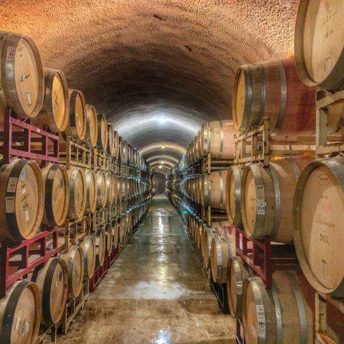 winery-5